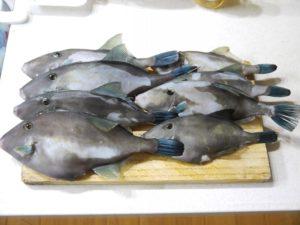 ウマヅラハギ さばき方 刺身 肝 醤油
