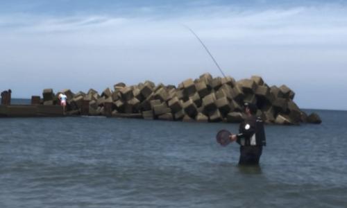 のべ竿 キス釣り 夏