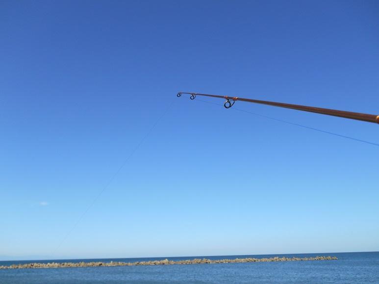 初めての海釣り なつかしい 娘と一緒に釣り キャスティズム